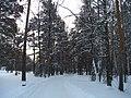 G. Miass, Chelyabinskaya oblast', Russia - panoramio (9).jpg