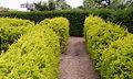 Garden Groombridge 11.JPG