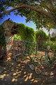 Garden at Mission San Juan Capistrano.jpg