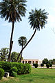 Garden of Kamran Mirza Baradari.JPG