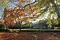 Gardens at Rowsley - geograph.org.uk - 596368.jpg