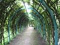 Gatchina. Private garden. Pergola.jpg