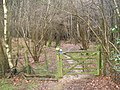 Gate entrance to Apsley Wood - geograph.org.uk - 1725330.jpg