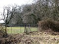 Gate into a cattle pasture - geograph.org.uk - 1756096.jpg
