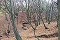 Gdansk Potok Kowalski 24.jpg