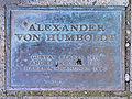 Gedenktafel Budapester Str 31 (Tierg) Alexander von Humboldt.JPG