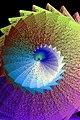 Geometrics - 7638371230.jpg