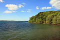 Gfp-new-york-wellesley-island-state-park-shoreline-and-the-sky.jpg