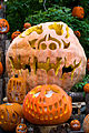 Giant Pumpkin Display (22385578682).jpg