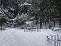 Giardini Tito Rosina - panoramio - Emanuela Meme Giudic… (12).jpg