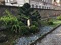 Giardino dei Semplici di Firenze 29.jpg