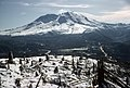 Gifford Pinchot National Forest, Mt St Helens NVM, volcano blown down trees (36777742410).jpg
