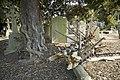 Glasnevin Cemetery (442811655).jpg