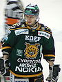 Glenn Ryan Ilves 2010 1.jpg