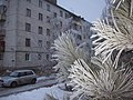 Gorodishche, Volgograd Oblast, Russia - panoramio (81).jpg