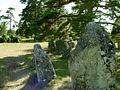 Gotland-Galrum 03.jpg