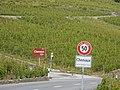 Grandvaux, Bourg-en-Lavaux, Switzerland - panoramio (11).jpg