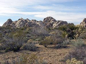 Granite Mountains (California) - Closer view of granite outcrop in the Granite Mountains.