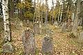 Gravestones at Jewish Cemetery in Dřevíkov, Chrudim District 05.JPG