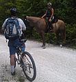 HBTSP HorseTurning (10542672676).jpg
