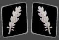 SS Gorget patches