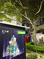 HK Sheung Wan PMQ Aberdeen Street tree night Dec-2015 DSC.JPG