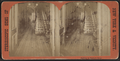 Hallway in Beecher's house, from Robert N. Dennis collection of stereoscopic views.png