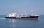 Hapag-Lloyd Frachtschiff Ludwigshafen nahe bei.png