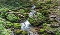 Hartelsgrabenbach Stream, Gesäuse National Park, Ennstaler Alpen, Austria.jpg
