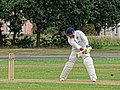 Hatfield Heath CC v. Thorley CC on Hatfield Heath village green, Essex, England 12.jpg