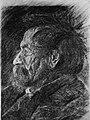 Head of an Old Man MET 271181.jpg