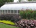 Hillwood Gardens in July (19806551421).jpg