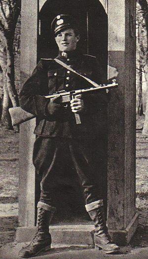 HIPO Corps - Image: Hipoguard danish police uniforma