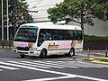 Hitachi Jidosha Kotsu 1002 Liesse 2.jpg