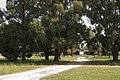 Holbrook NSW 2644, Australia - panoramio (23).jpg