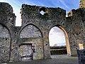 Hore Abbey, Caiseal, Éire - 46533737452.jpg