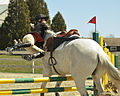 Horse Jumping almost.jpg
