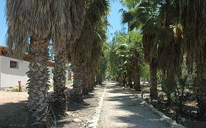 Hulda, Israel - Image: Hulda lane