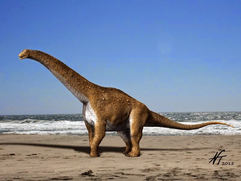 Hypselosaurus NT small