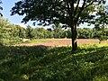 IMG 3941 - panoramio.jpg