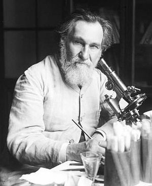 Probiotic - Élie Metchnikoff first suggested the possibility of colonizing the gut with beneficial flora in the early 20th century.