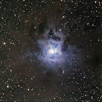 Iris Nebula - Iris Nebula (NGC 7023 and LBN487)