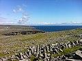 Jaggy rocks at Dún Aonghasa (6007847943).jpg