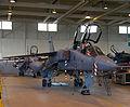 Jaguar (4700080263).jpg