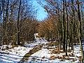 Jar pri Bukovci - panoramio.jpg