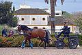 Jerez 2015 10 19 1921 (24369335039).jpg