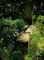 Jewish cemetery Otwock 10759799.jpg
