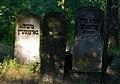 Jewish cemetery Otwock Karczew Anielin IMGP6785.jpg