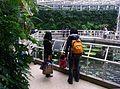 Jindai Botanical Garden-5.jpg