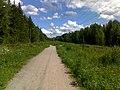Jogging paths in Hervanta - panoramio (3).jpg